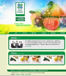 某农业投资有限公司网站源码