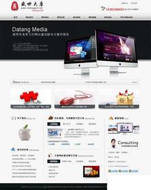 网络公司模板分享【已做好站内seo】