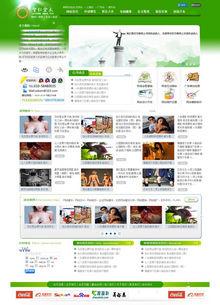 绿色大气的网络公司企业织梦模板