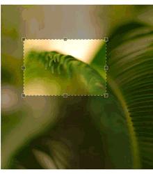 jQuery图像裁剪插件设置图片区域截图效果