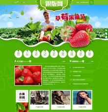 带手机版的绿色水果蔬菜类织梦模板