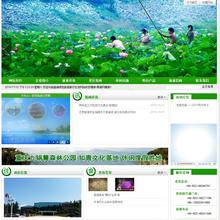 高端旅游旅行社类网站织梦模板