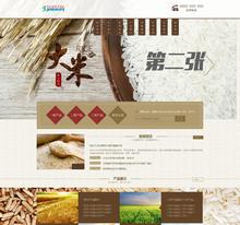 谷类农作物农业展示加盟类网站织梦模板