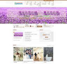 婚纱摄影工作室影楼类企业网站织梦模板