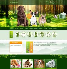 宠物狗机构类网站织梦模板(带手机端)