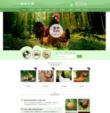 家禽畜牧养殖类网站织梦模板带手机端