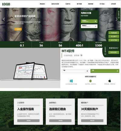 大气响应式自适应外汇贵金属展示类织梦网站模板