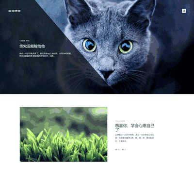 HTML5清新文艺个人博客文章类织