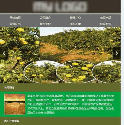 水果进出口公司展示销售类织梦手机模板