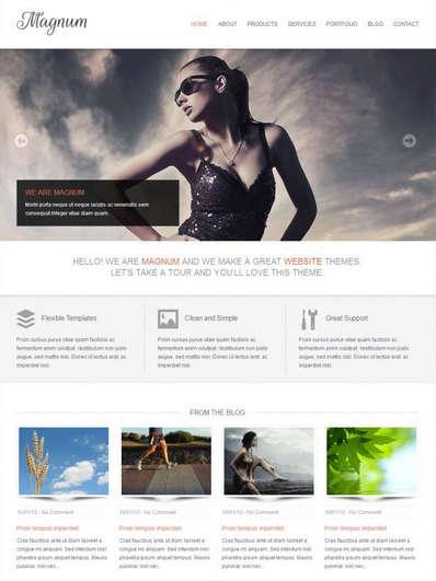 html5响应式个人博客图片展示类静态网站模板下载