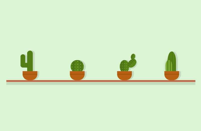 仙人掌植物盆栽ui布局特效