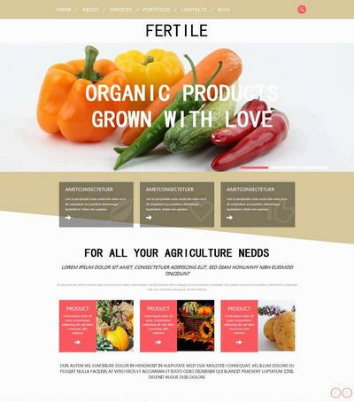 简单国外蔬菜水果种植生产html网