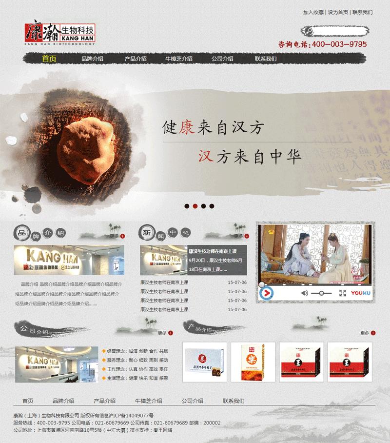 中国水墨风格的健康医药介绍网站模板