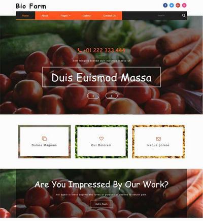 大气有机蔬菜水果种植网站模板html下载
