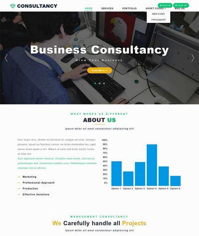 大气宽屏商业咨询公司网站模板