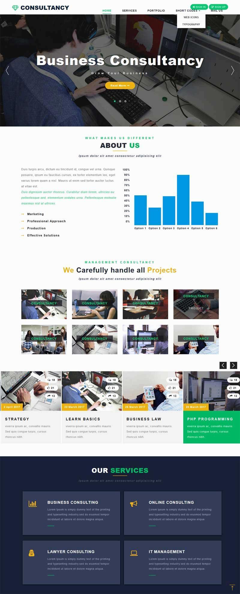 大气宽屏的商业咨询公司网站模板
