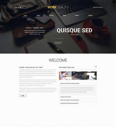 宽屏商务咨询服务公司网站html模