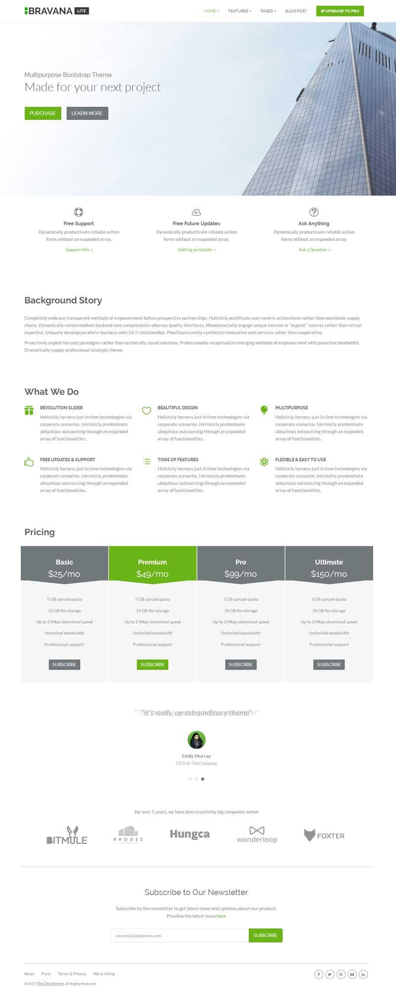 绿色实用的软件开发公司官网模板html整站