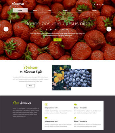 宽屏国外水果种植网站模板html下载