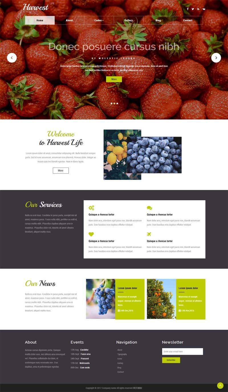 宽屏的国外水果种植网站模板html下载