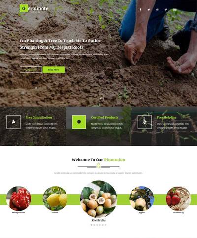 宽屏蔬菜水果农业种植网站html模板下载
