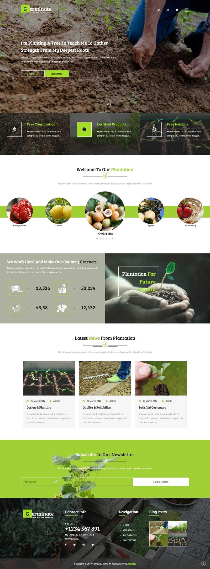绿色宽屏的蔬菜水果农业种植网站模板下载