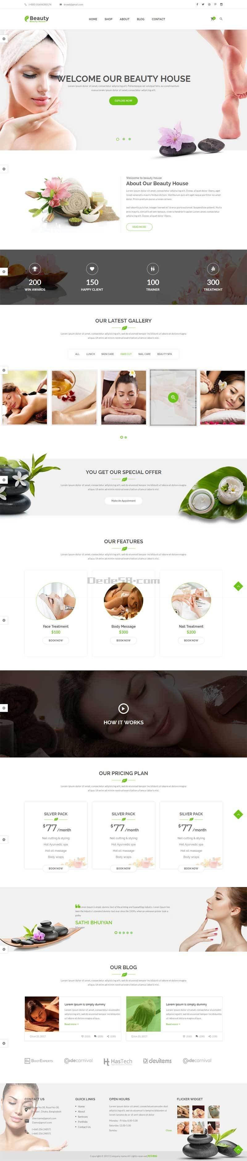 大气的美容健康养生spa会所网站模板