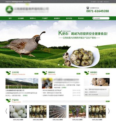 家禽养殖公司html静态网页模板