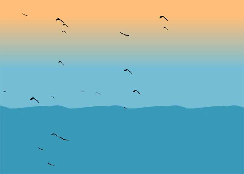 海面上一群鸟飞行场景特效