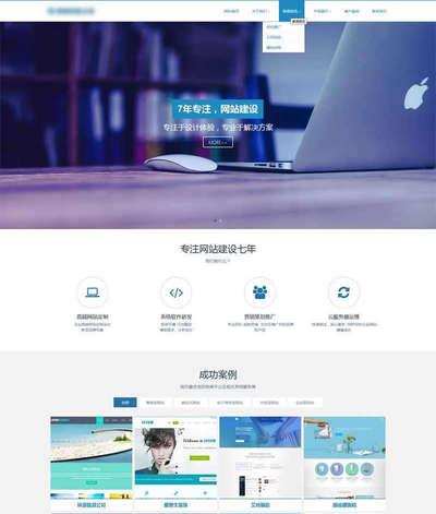 html5大气的网站建设公司网站模