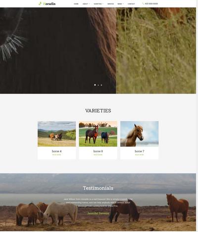 英文外贸马匹饲养养殖场织梦网站模板