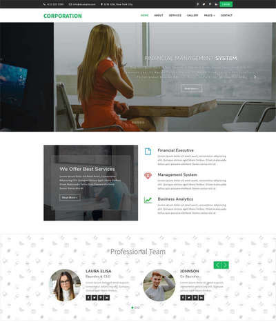 响应式财务管理咨询公司html网站