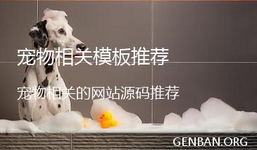 宠物网站模板_宠物相关网站源码下载
